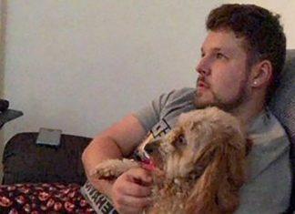 Ryan and his pup - Scottish News