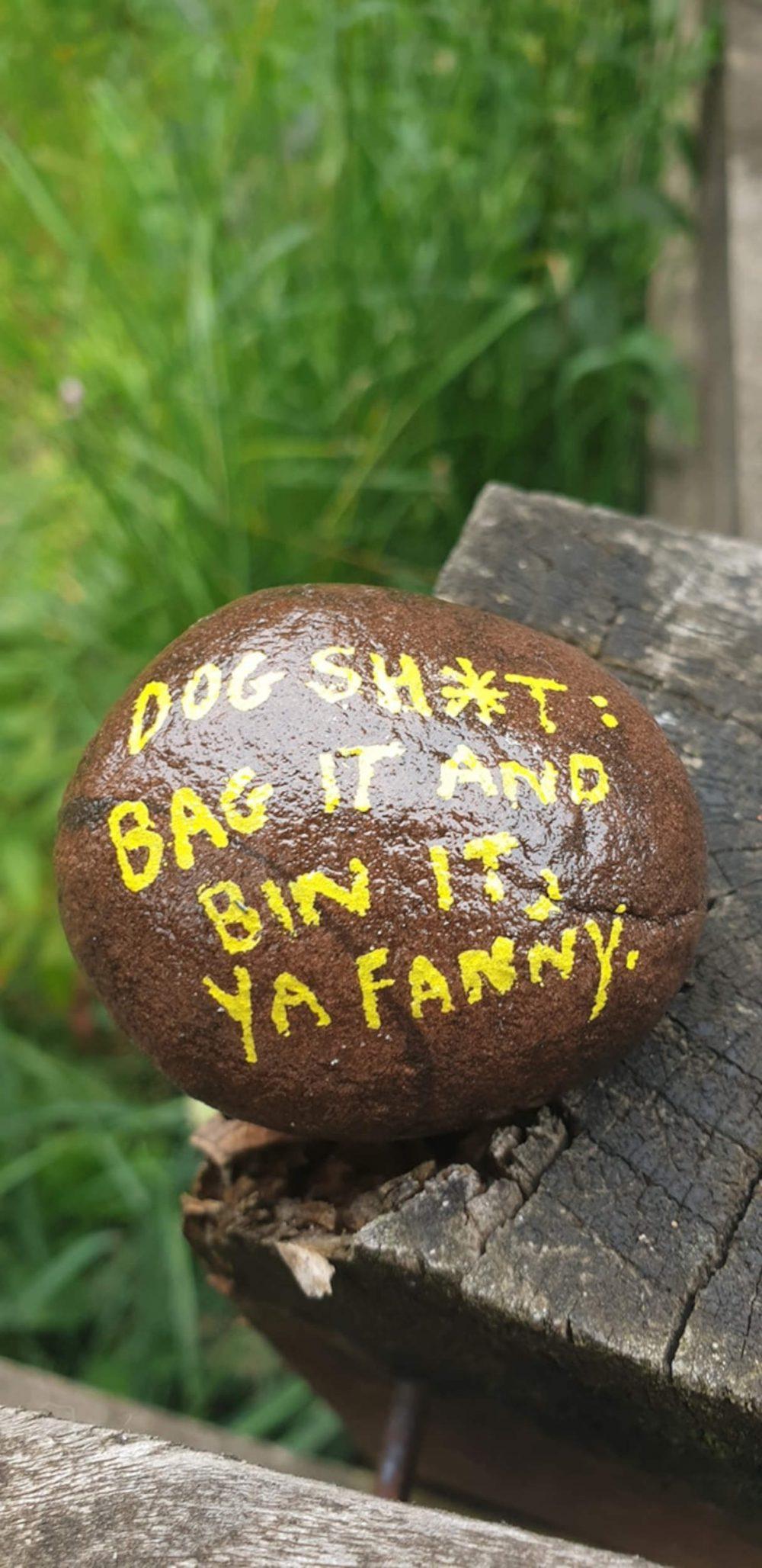 Dog poo stone Eliburn Park - Scottish News
