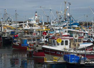 Seafish - Research News Scotland