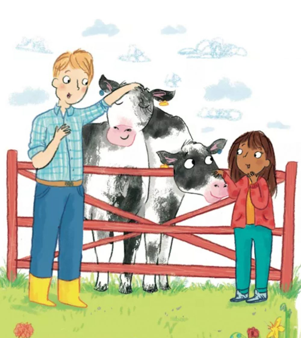 M&S book cows - Consumer News UK