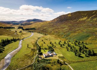 estate - Property and Constructions News Scotland