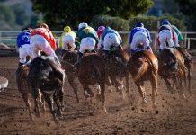 horse race - scottish news