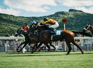 horse racing - scottish news