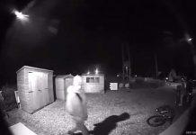 Ringcam of fairy garden thief - Crime News UK