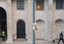 Chicken cable tied to a sign post | London News