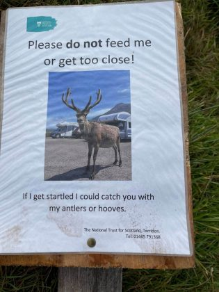 Don't feed stags sign - Wildlife News Scotland
