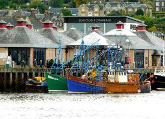 Scottish fishermen use app to reduce bycatch problem